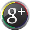 home inspectors google+
